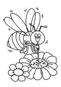 abelha pólen flor